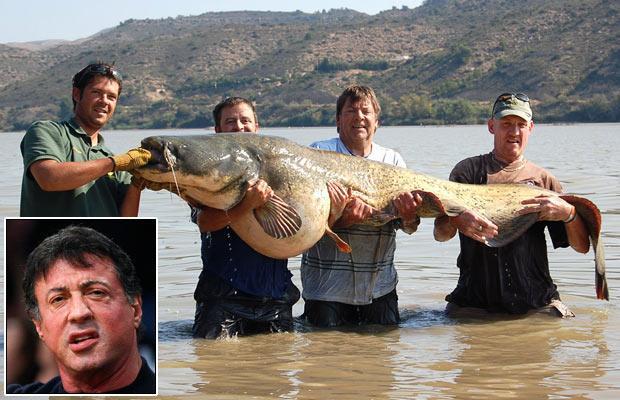 Alan Melhuish 2 pa labi ar... Autors: bizonis1 Lielas zivis = Slavenības