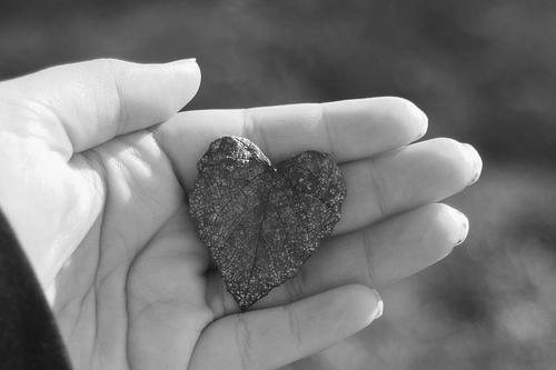 Sirdī kurā nav mīlestības nav... Autors: Hope Mīlestība
