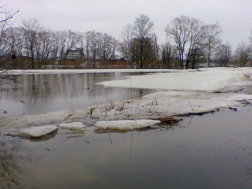 Autors: doksnomarsa Jelgavaa pluudi #3