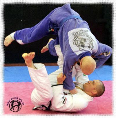 JiuJitsu Autors: raimisx Kādu cīņas mākslu izvēlēties?