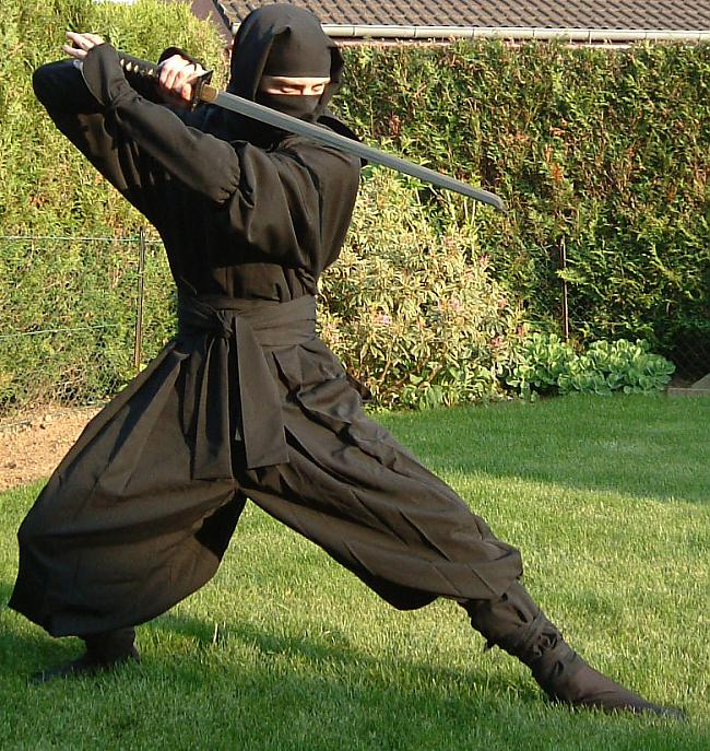 Ninjutsu Autors: raimisx Kādu cīņas mākslu izvēlēties?