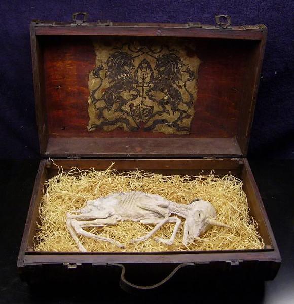 Visticamak ta ir beigta aita... Autors: relix11 Vienradzi - patiesiba vai miits?