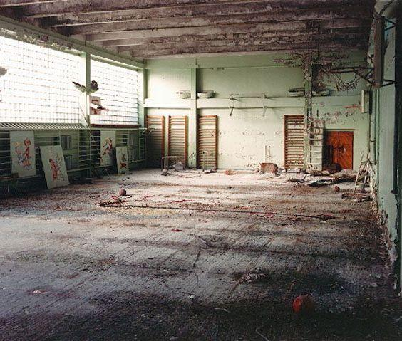 Autors: meXetaS Patiesība par Černobiļu ir baisāka!