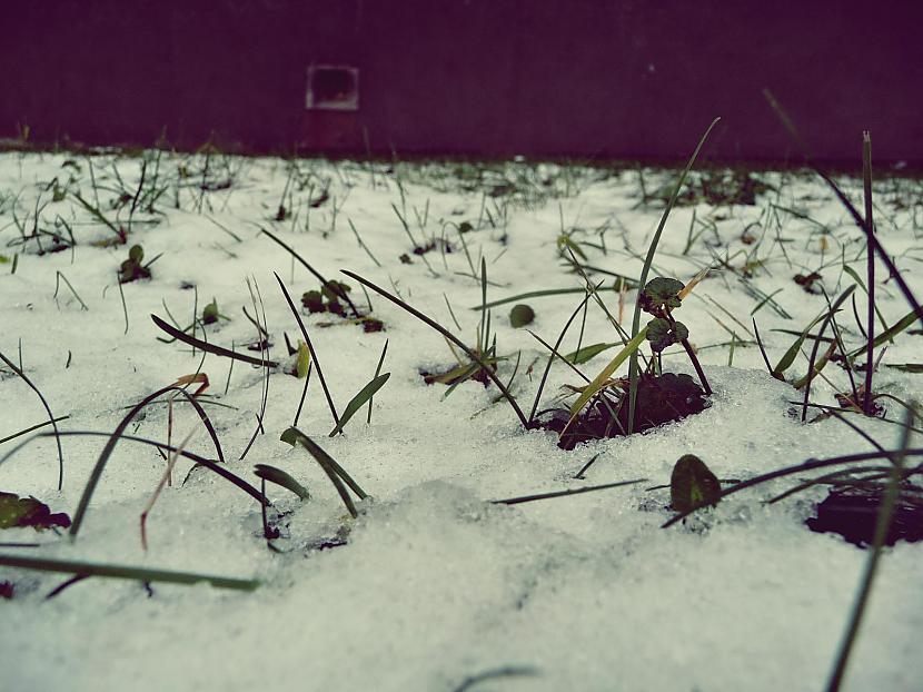 Autors: Līīshe Ziema/pirmais sniegs/