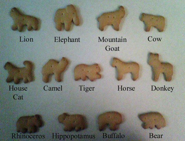 Dzīvnieku cepumu dēļ daudzi... Autors: Mr T Interesanti fakti 5.