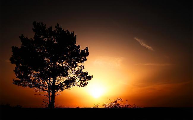Skatoties saullēktu kopā ar... Autors: Chesterz Makes Me Think