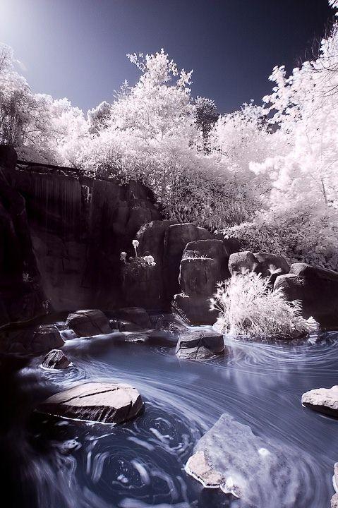 ec808x Autors: jankabanka Neticami infrasarkanās fotogrāfijas paraugi.