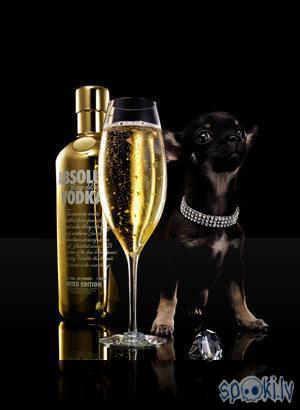 Grand Royal         1 daļa... Autors: zurciits 10 alkoholiskie kokteiļi ar degvīnu!!!!
