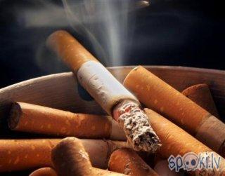 Autors: Fustijs Taivānā notiks sacensības smēķēšanas atmešanā