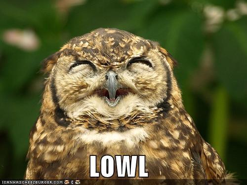 Pūce ir vienīgais putns kura... Autors: MJ Fakti par TEVI!!!