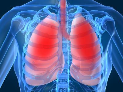 Tava kreisā plauša ir mazāka... Autors: MJ Fakti par TEVI!!!