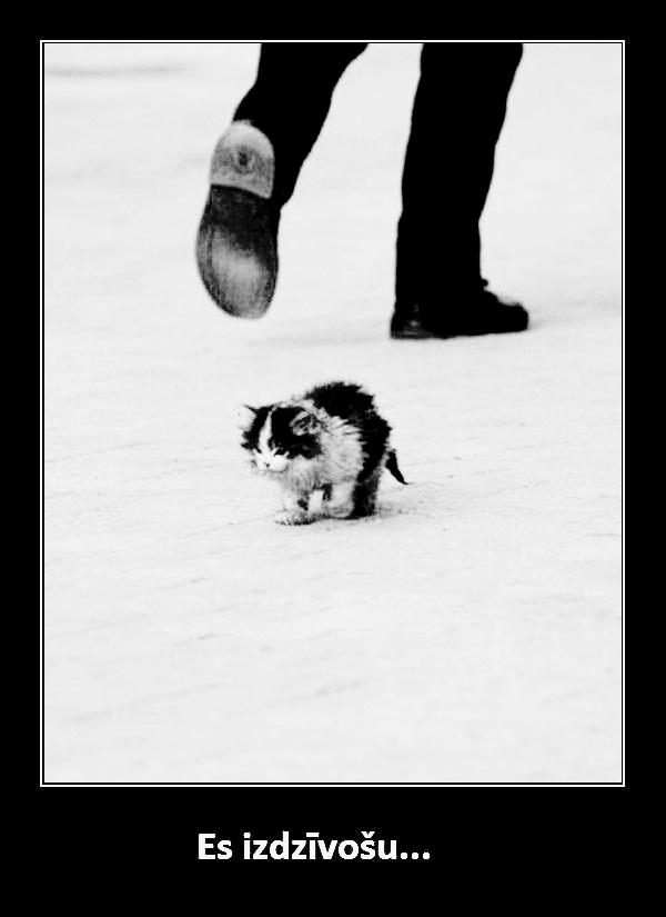Es stāvu kājās jo tikai vājie... Autors: Sandrinjaa Tev patiks.
