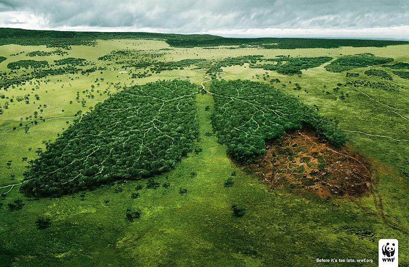 Cilvēka labajā plaušā ietilpst... Autors: binlaadens Fakti par cilvēku