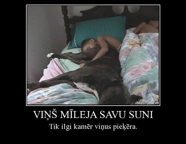 Autors: Karalis Kriksis Viņš mīleja savu suni