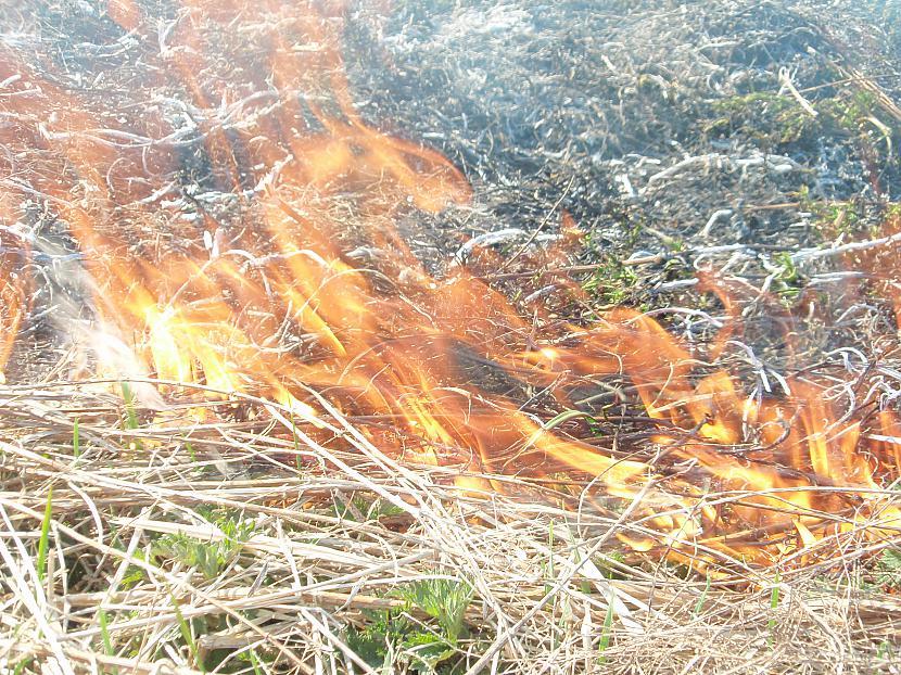 visur zemas liesmas Autors: telly Kūla deg!