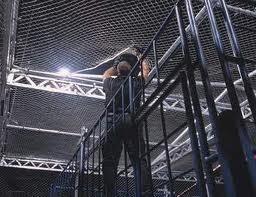 Al Show vs The Big Bossman... Autors: GreatLauris Labākie Hell in a cell mači
