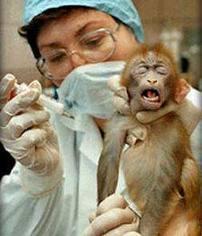 Viņiem arī sāp Autors: ZiemeļBriedis Parakstu vākšana dzīvniekiem!