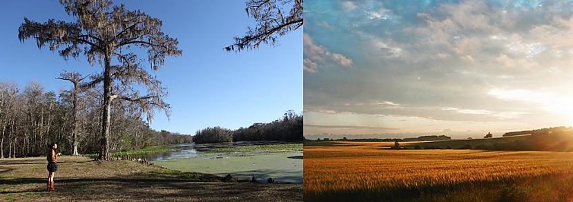 ASV un Latvijas lauki Autors: colorful ASV-Latvija