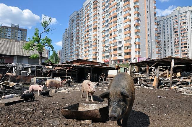Par šo vietu tika uzņemta... Autors: ainiss13 Ukrainas galvaspilsēta???