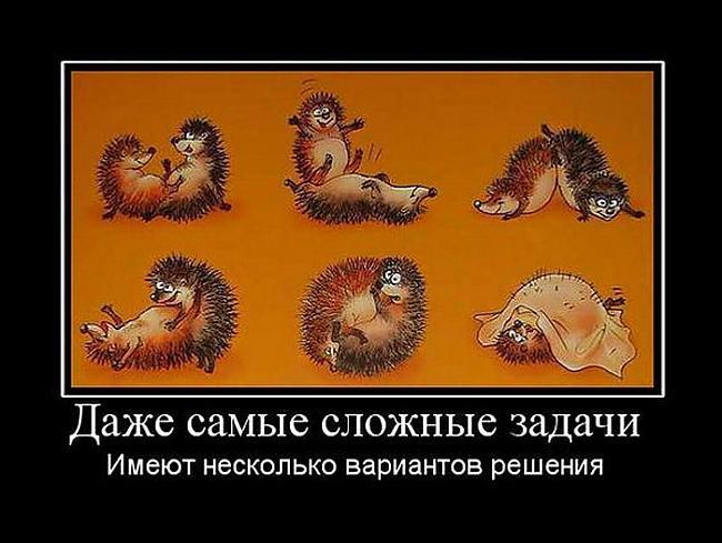 Autors: Fosilija Melnie...