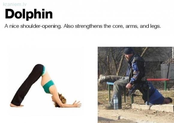 Dolphin  Lieliska pleciem... Autors: slix Alkohols vs Joga! Kurš labāks?
