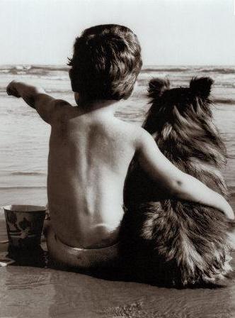 Kad es vēl biju kucēns tu... Autors: samepersonsamesmile Stāstiņi!