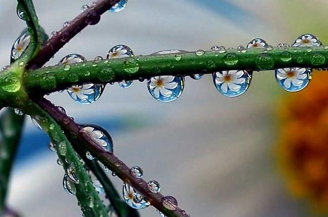 Autors: debestinjs <3 jiff...