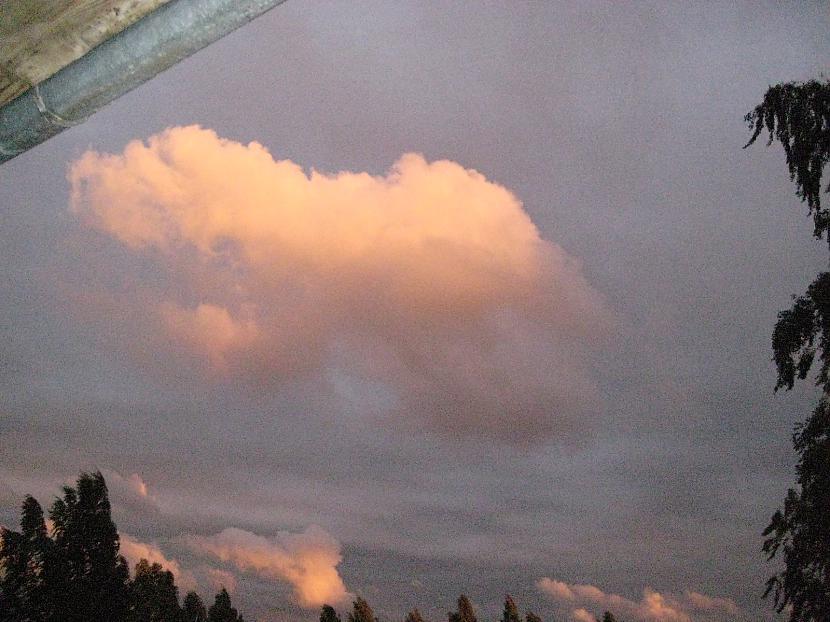 Autors: dafs132 Dabasskats no mana balkona
