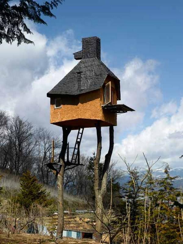 Koku māja kokā  Negribētu Autors: Kuukijs Gribētu dzīvot?