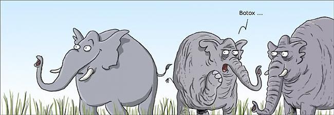 Botoks Autors: tucs Karikatūras 2