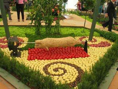 Autors: kitys vegetable art