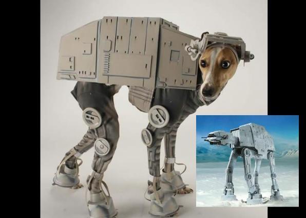 Salīdzinājums Autors: DP Arodeyz Helovīnu suns.