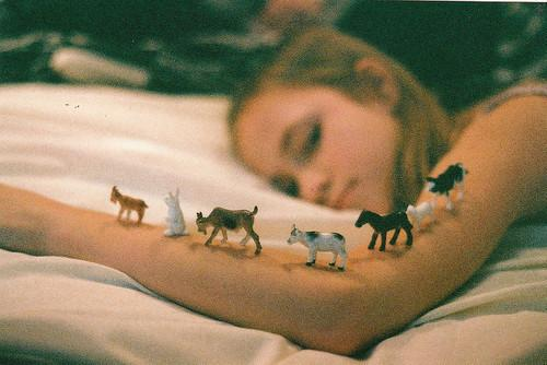 Autors: DūKiJa too sleepy to think