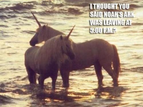 Why unicorns are extinct Autors: JustAnEmtyFace haha