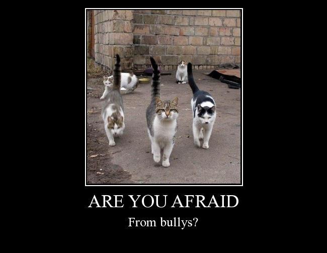 Autors: Morphy Are you afraid