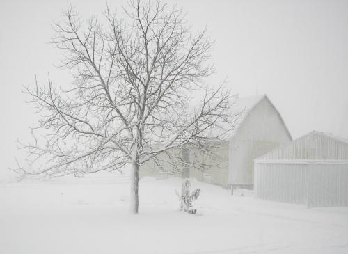 Autors: ghost07 Latvijai tuvojas sniegavētra