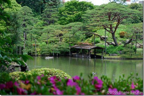 Rikugien Gardens Dārza... Autors: wildkuilisNEWS6 Pasaules skaistākie dārzi