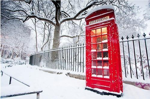 Autors: gitaa winter
