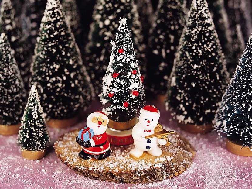 Pavadīsim gaduCūkas Ēdot... Autors: cezijscs Jautri dzejolīši + ziemassvētku attēli