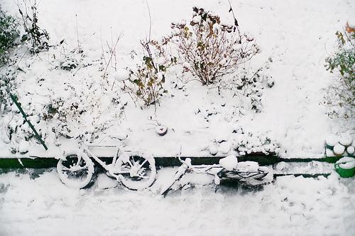 Autors: BlondaSmadzene Winter