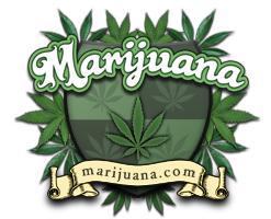 Marijuana Autors: unnamedLV PACELTS! Legalize it!