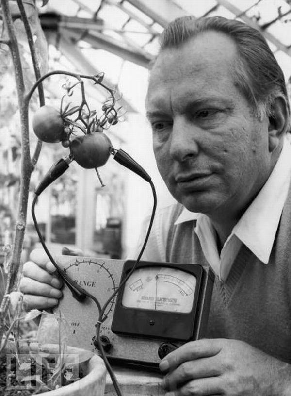 Habarda elektrometrs 1968  šis... Autors: dea nejēdzīgi izgudrojumi.