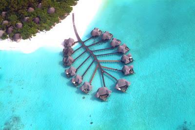 Autors: Asiņainā Mērija Vai tu gribētu tur dzīvot?