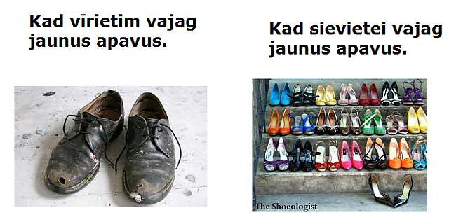 Autors: The Diāna Vīrieši vs sievietes [uztvere]