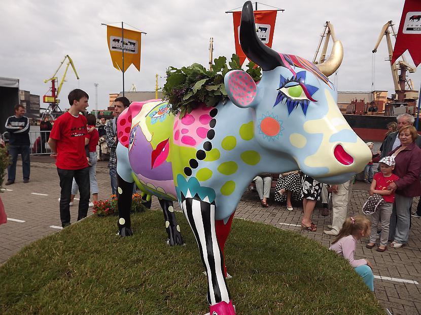 Sieviscaronķīgā govs... Autors: rutazeva ''Govju parāde'' Ventspilī.