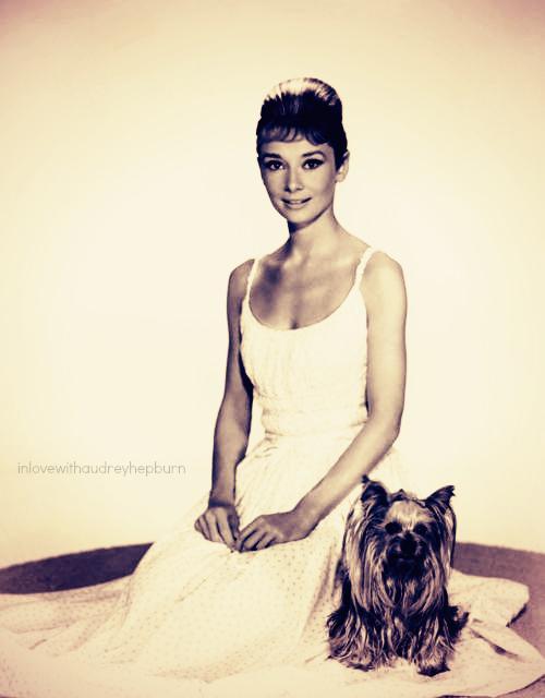 Letrsquos face it a nice... Autors: serenasmiles Audrey Hepburn bildēs un citātos.
