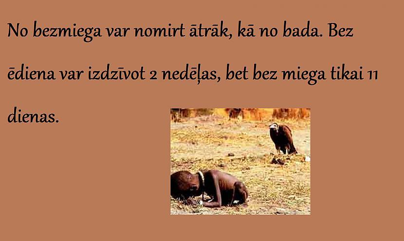 Autors: arctic monkey nedzirdēti fakti