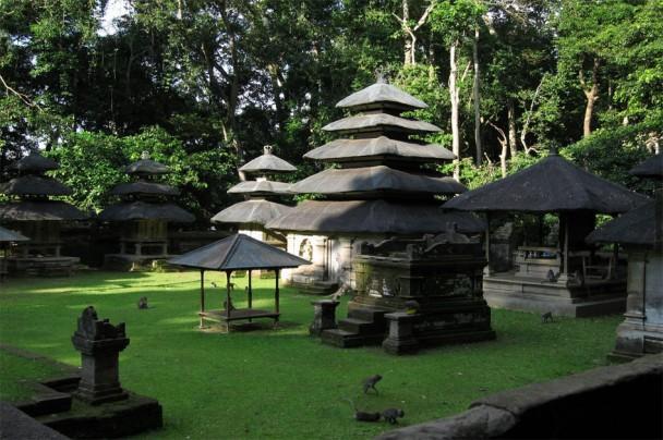 10nbspPērtiķu mežscaron... Autors: Persija Indonēzijas sala - Bali