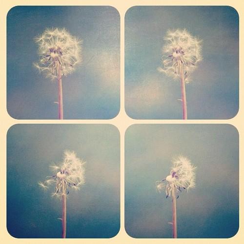 Autors: hohoba This makes me happy2