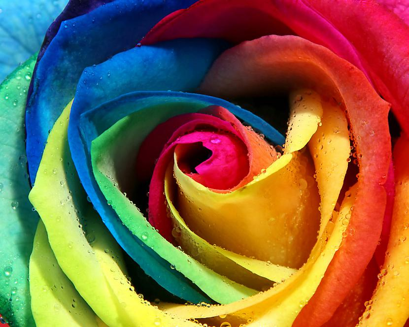 Autors: ssunsshine 'colourful..